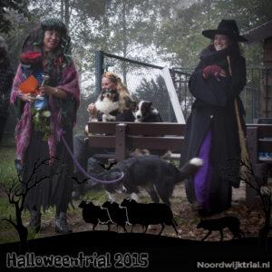 Halloweentrial zondag klasse 1-6 2e plaats - Carla van Rijn met